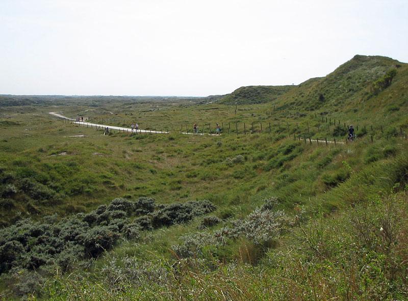 Dunes cycle tracks/walkways
